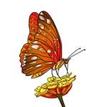 FREE Butterfly Clip Art 23