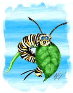 FREE Butterfly Clip Art 24